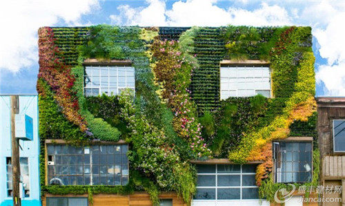 阿德莱德动物园有一个绿色屋顶和很多活生生的墙壁