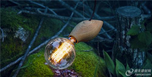 有趣的动物形状的灯