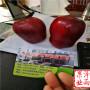 3公分-4公分-5公分-6公分红将 苹果树价格走势表、(宁夏)