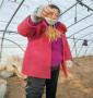 遼寧大連蘭丁2號砧木育苗中心,穴盤的蘭丁2號砧木
