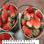 久香草莓種苗大型基地、天津市久香草莓種苗最適合種植