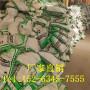 歡迎訪問##河北張家口水泥砂漿纖維##實業集團