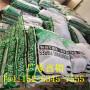 歡迎訪問##四川樂山建筑砂漿纖維##實業集團