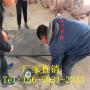 歡迎訪問##邯鄲武安浸乳化瀝青木板##實業集團