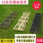 荷塘竹籬笆草坪護欄九江市潯陽竹圍欄碳化竹護欄木護欄