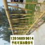 大观竹篱笆木护栏陕西碑林竹围栏花园栅栏木护栏