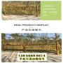 金山竹籬笆木頭護欄韶關曲江竹圍欄pvc護欄木柵欄