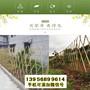 海豐竹籬笆竹護欄德州齊河竹圍欄pvc圍擋木柵欄