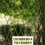 泸县竹篱笆木头护栏贺州平桂竹围栏pvc栅栏木栅栏