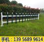 安阳pvc护栏围栏【13956899614】