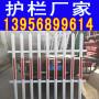 山东菏泽pvc护栏_pvc绿化带护栏_塑钢栏杆市场走向
