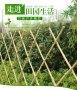 新闻:湖南湘西别墅装饰栅栏护栏@施工团队