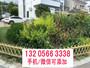 歡迎##河南南陽籬笆竹子報價##實業集團