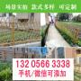 歡迎##焦作孟州菜園圍欄多少錢##實業集團