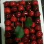 ;美国一号樱桃树苗供应拉宾斯樱桃树苗