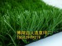 镇平县塑料草坪多少钱信息