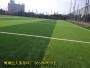 新闻:承德承德县中国足球场草坪是人工得多少钱【股份@有限公司】