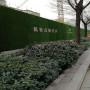 工地圍擋綠色草皮哪些比較好