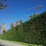 塑料墙面草坪