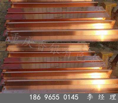 歡迎——V型止水銅板——龍巖廠家