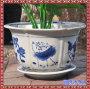 景德镇卡通动物陶瓷小花盆迷你花盆个性佩琪社会工艺装饰手工花盆