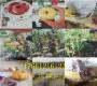 今年—福建漳州賣的桃樹苗價格詢問【共贏】基地
