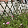 庭院圍欄衡陽南岳區新農村小柵欄安裝與送貨
