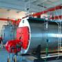 威海立式燃煤蒸汽鍋爐生產廠家