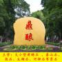 园林大型景观石头天然风景石自然石户外广场标志观赏石村牌刻字石