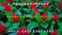 新疆庫爾勒紅花紫薇種子種植方法組圖