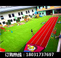 新闻;蝶山绿色草坪围挡服务介绍【股份@有限公司】
