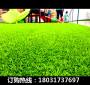 新闻;开封杞县高尔夫球场草坪造价是多少【股份@有限公司】
