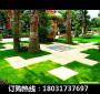 新聞:益陽資陽圍擋仿真草坪使用年限(滄州資訊)