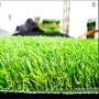 塑膠跑道人造草坪(產品特點)保定望都【股份@有限公司】