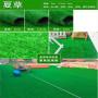 今日報價:工程足球場草坪圍擋點擊咨詢報價【阿魯】