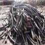 咨詢#濱州市二手電線電纜回收——多少錢電話