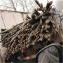 歡迎#臺州市回收電纜——多少錢一斤