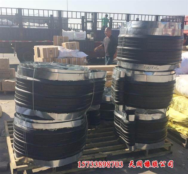 國標價格<<滁州350寬鋼邊式橡膠止水帶__錄制
