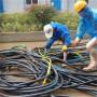 南京市溧水区回收配电房动力电缆线√电缆线回收公司