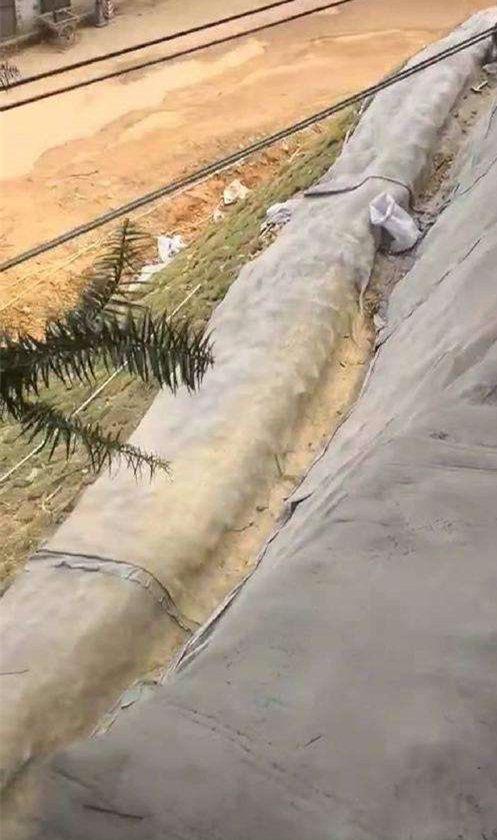 2021歡迎訪問焦作解放區##水泥毯哪里有銷售#推薦