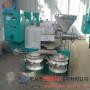 河南省郑州小型榨油机专业厂家《什么价位》