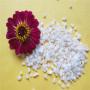 快讯:眉山石英砂滤料—用法用途