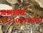广州市黄埔区笔村废品回收站_推荐