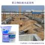 秀洲聚合物防腐水泥漿_自來水廠防碳化_秀洲防腐漿料型號