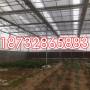 天津阳光板温室造价-天津PC耐力板雨棚