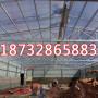 欢迎光临:武邑县6毫米湖蓝阳光板雨棚专业制造有限公司