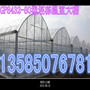 加格达奇火龙果大棚25*1.2*6.8米一亩地用多少材料?√加格达奇