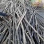 博興電纜回收 博興電力電纜回收