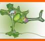 今日报价:总体规划设计龙泉公司-农业科技示范园项目