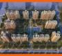 鸡西市虎林市会写概念性规划文本-可行性报告的公司